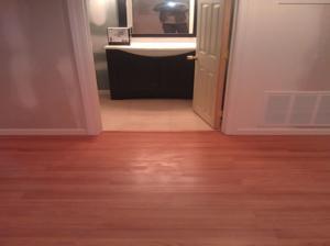 The Basic Basement Co._finished basement with full bathroom _East Brunswick-NJ_December 2013